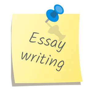 911 Essay Help - Your Own College Essay Writing Helper